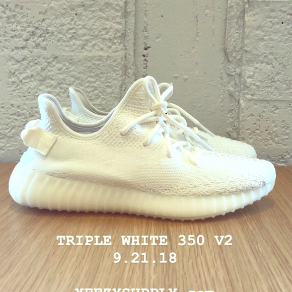 Yeezy Shoes | Brand New Boost 350 Size